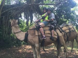 Camel D & K
